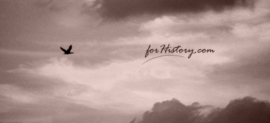forHistory.com - Welcome